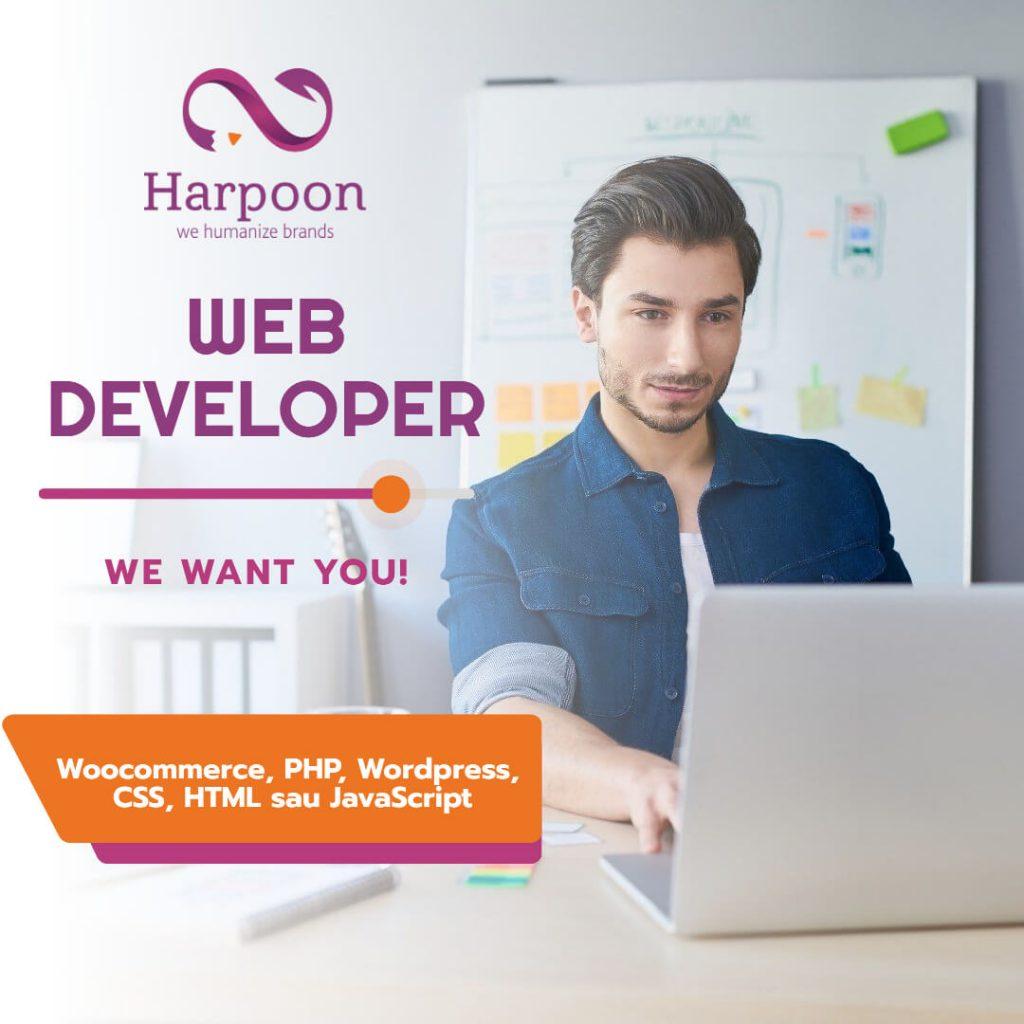 web developer baia mare